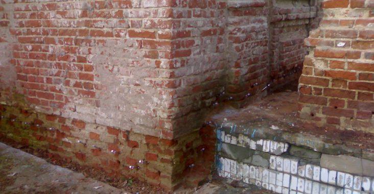 Плесневый грибок на кирпичных стенах